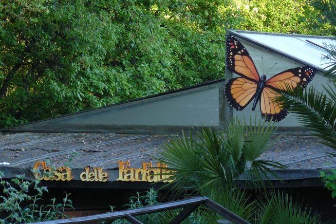 Casa delle Farfalle 3